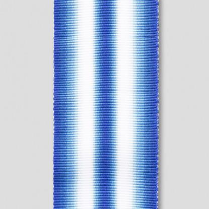 ARCTIC MEDAL RIBBON FULL SIZE