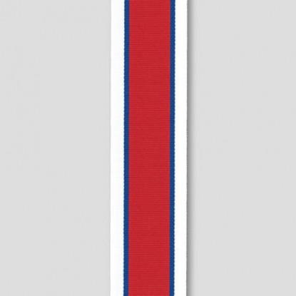 Hors de Combat Miniature Ribbon