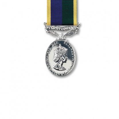 Territorial Efficiency Miniature Medal E.II.R.