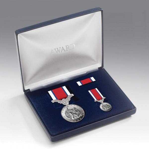 Hors de Combat Medal Presentation Set
