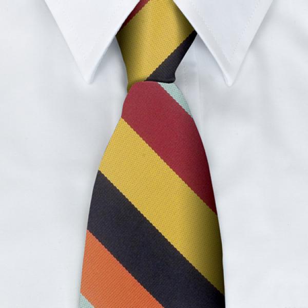 RAF Regiment Tie
