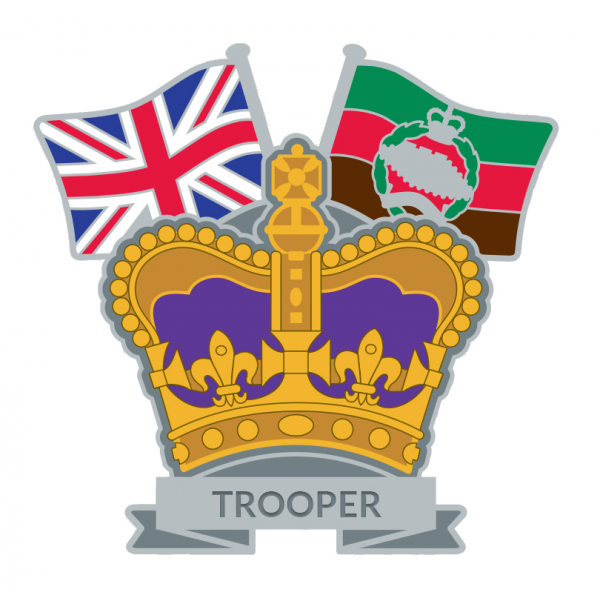 Royal Tank Regiment Crown & Country Lapel Badge