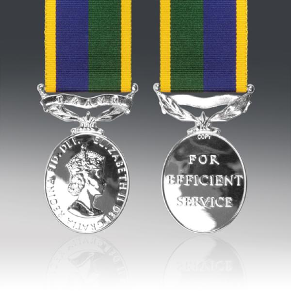 T & AVR Efficiency Medal EIIR
