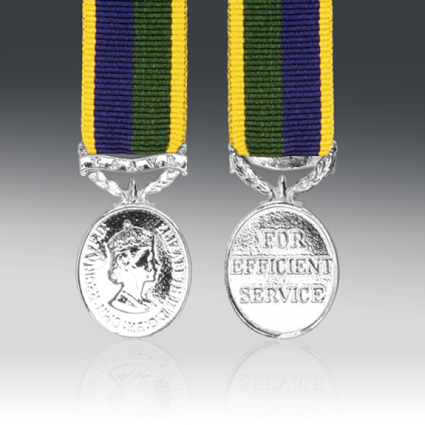 T & AVR Efficiency Miniature Medal EIIR