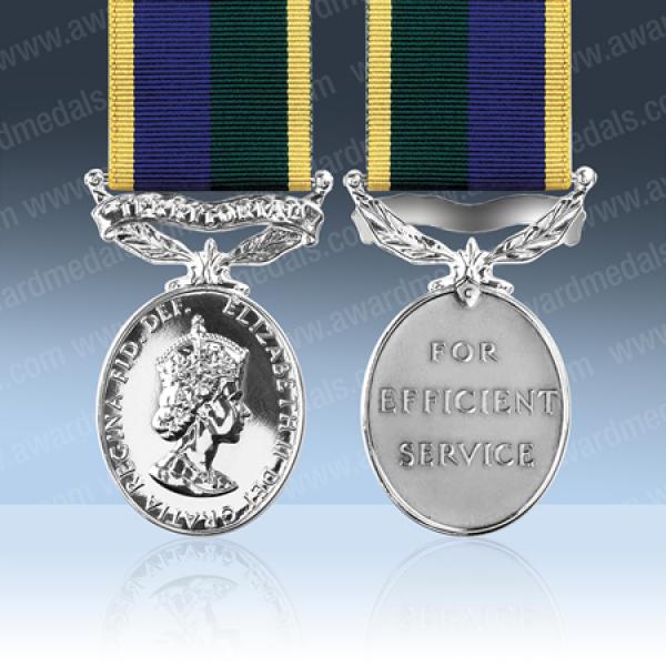 Territorial Efficiency Medal EIIR