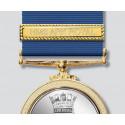Gilt Finish Medal Clasp 1