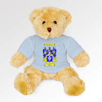 Teddy Bear With Personalised Baby Blue T-Shirt
