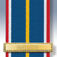 National Service Lapel Badge of Pride Clasp 2