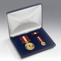 Restoration Of Peace Medal Presentation Set