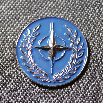 Nato Lapel Badge