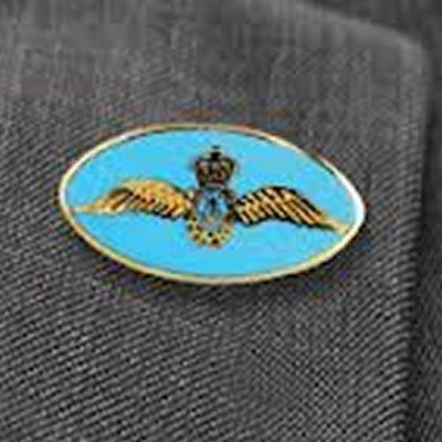 Oval Fleet Air Arm Lapel Badge