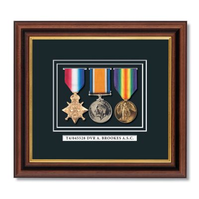 "Set Of 3 ""Pip Squeak & Wilfred"" Framed Full Size Medals"