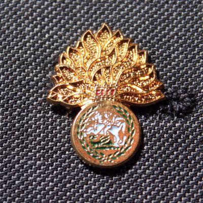Royal Regt Fusiliers Lapel Badge
