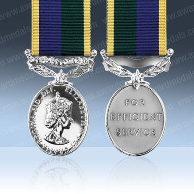 TA Efficiency EIIR Full Size Medal Loose