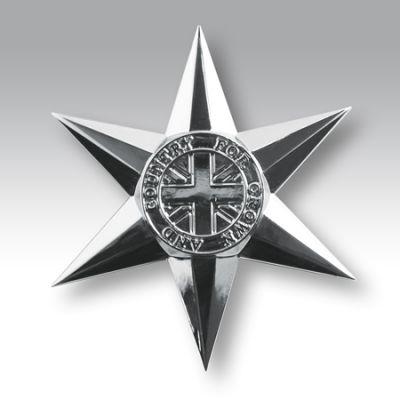 Veterans Star Lapel Badge