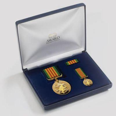 Vietnam Veterans Medal Presentation Set